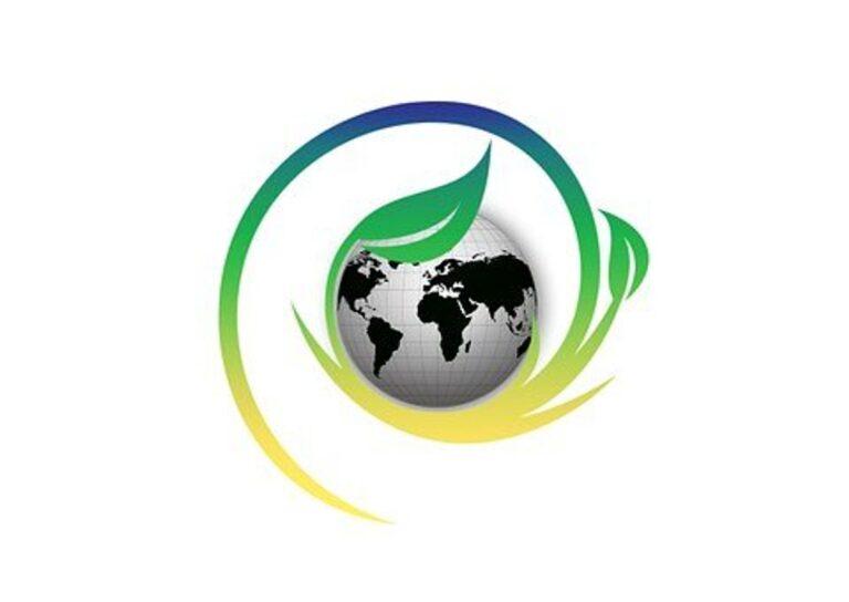 Logo designer New Orleans