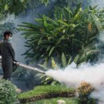 Fogging machine in Malaysia