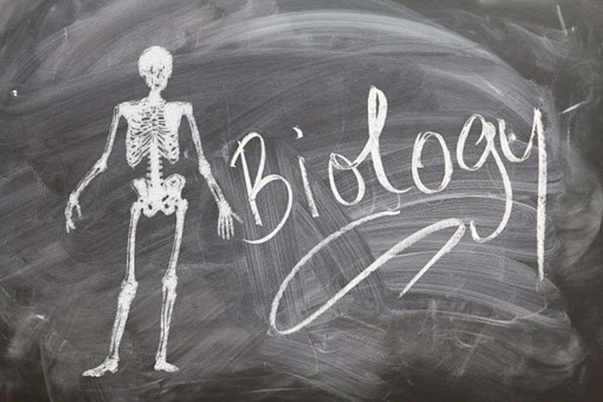 Neco Biology Practical 2021