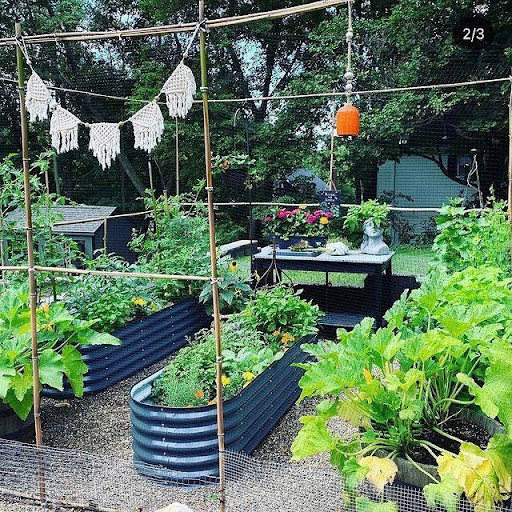 Some Ideas for Planting a Vegetable Garden